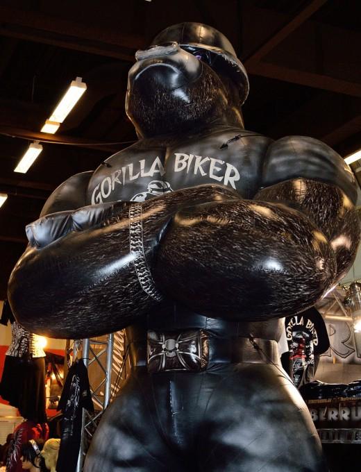GorilaBiker